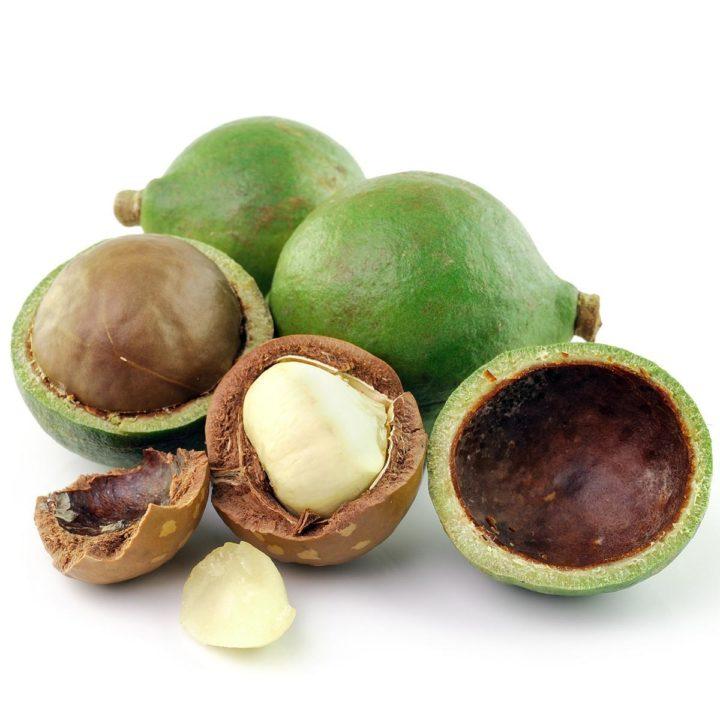 Macadamia massage-olie